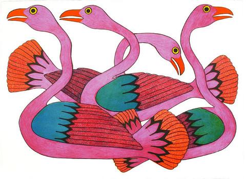 Les oiseaux de l'Arctique